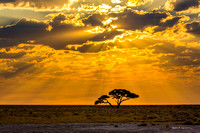 Sunrays through Etosha clouds