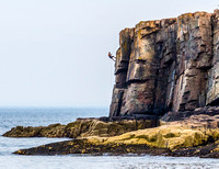 Rapelling at Otter Cliff, Ocean Drive, Acadia NP, Maine, July 7, 2013