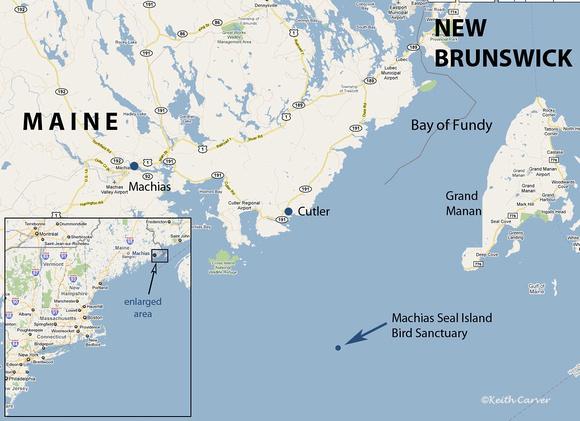 Machias Seal Island And North Rock