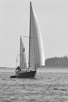 Sailing on Muscongus Bay