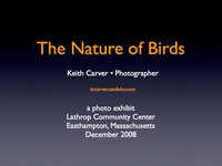 The Nature of Birds -  Lathrop show 2008