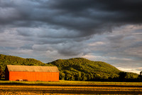 Tobacco Barn and Mt. Holyoke in late pm sun, clouds - Rte 47 Hadley 6June2014  - 5DM38347