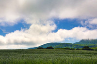 Mt. Norwottuck from Maple St Hadley 30May2014